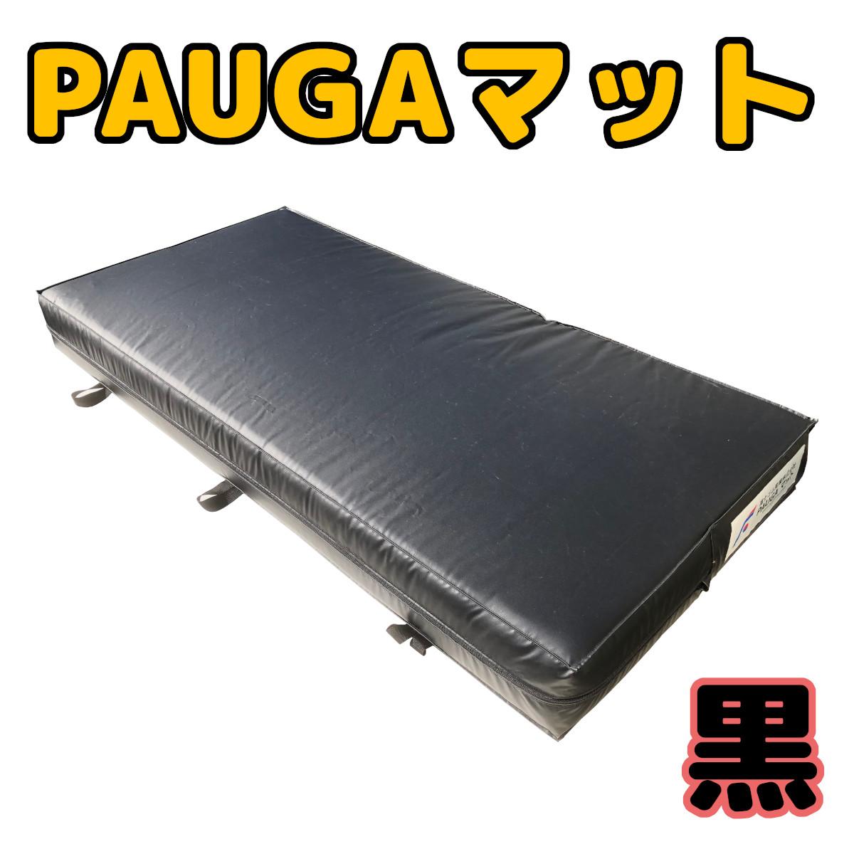PAUGAB1-1.jpg