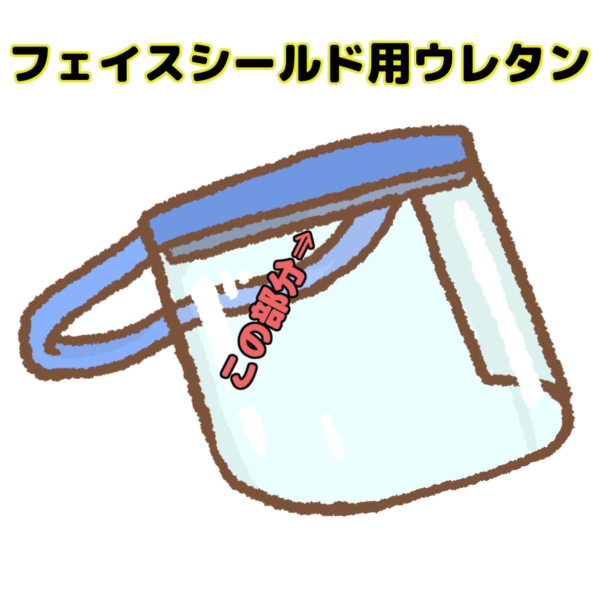 FSU1.jpg